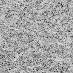 Shell Grey granite